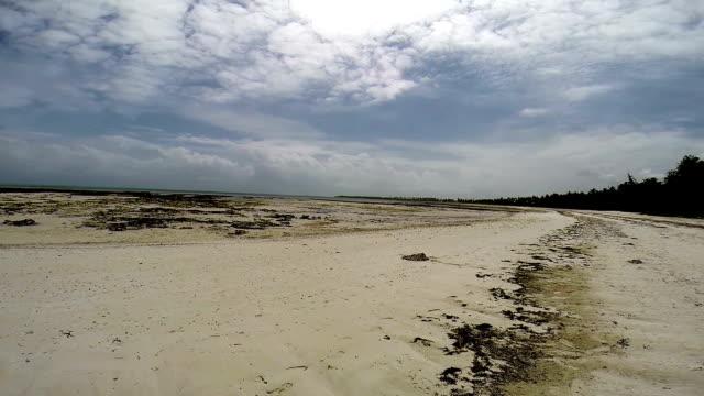Spiaggia di Zanzibar con la bassa marea