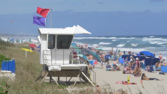 beach lifeguard and sunbathing vacationers - attività del fine settimana video stock e b–roll