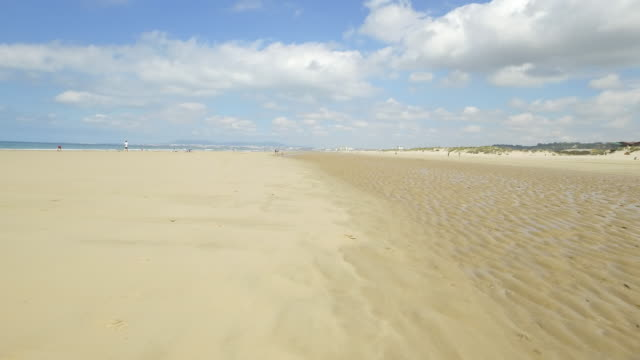 beach nature in portugal - low tide stock videos & royalty-free footage