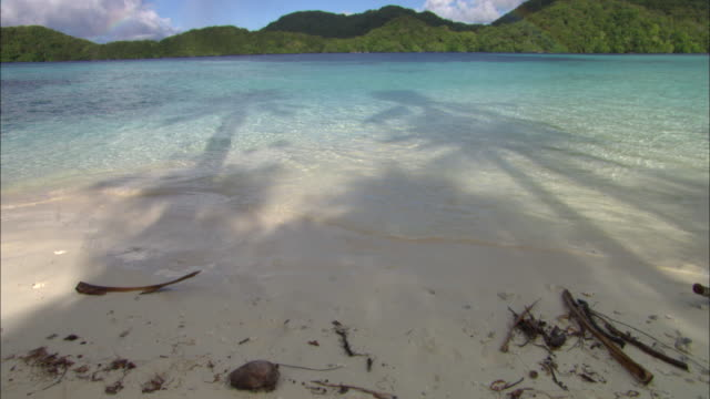 beach ocean palau, south pacific  - south pacific ocean stock videos & royalty-free footage