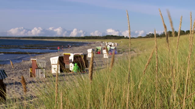 vídeos de stock e filmes b-roll de praia no mar báltico na tarde de verão · - ensolarado