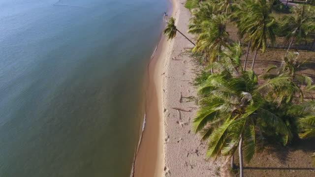 vídeos de stock, filmes e b-roll de beach on phu quoc island, vietnam - coco