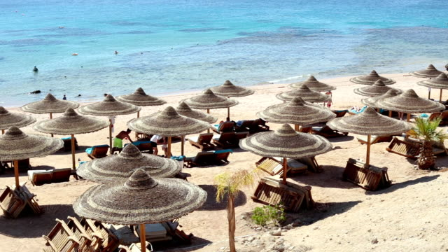 beach on the red sea. sharm el-sheikh. egypt. - exoticism stock videos & royalty-free footage