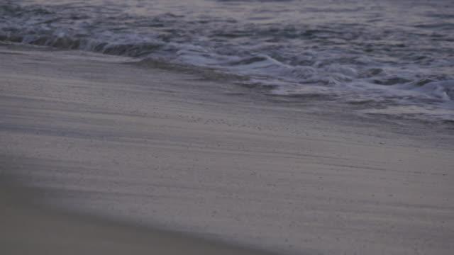 Beach & Pacific Ocean at Sunset, Puerto Vallarta, Nayarit, Mexico, North America