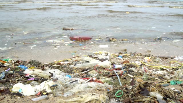beach pollution. plastic bottles and other trash on sea beach - dirty stock videos & royalty-free footage