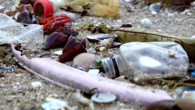 beach pollution - toxic waste stock videos & royalty-free footage