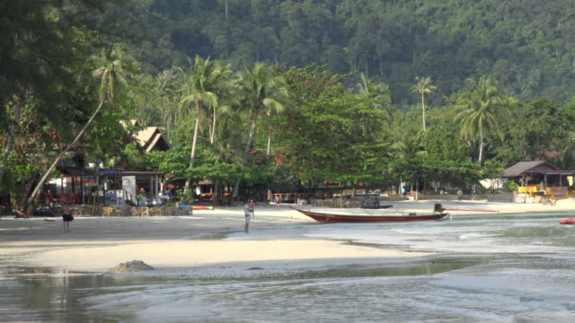 beach restaurant with palm trees - thailand stock videos & royalty-free footage