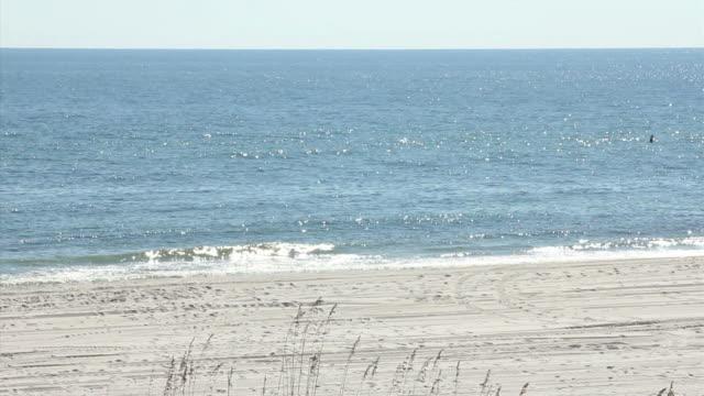 Strand-Szene in Gulf Shores, Alabama