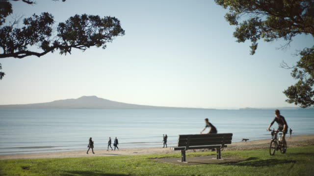beach scene with walkers and park bench - auckland stock videos & royalty-free footage