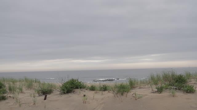 beach setting with waves crashing on rocks and grass blowing - オオハマガヤ属点の映像素材/bロール