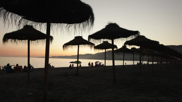 beach silhouettes at sunset - tropischer baum stock-videos und b-roll-filmmaterial