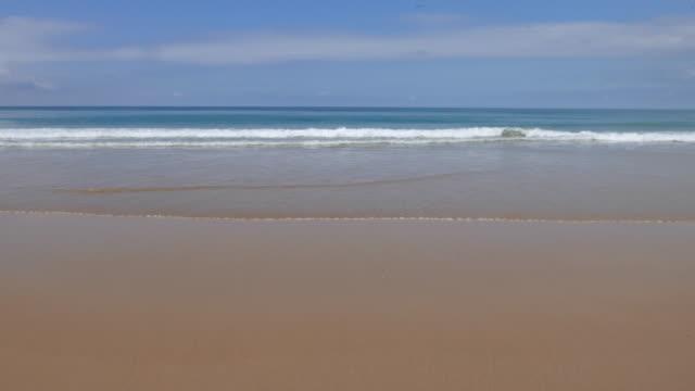 vídeos de stock, filmes e b-roll de praia de surf - vazante