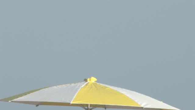 vídeos de stock e filmes b-roll de guarda-sol de praia-hd 30f - oscilar