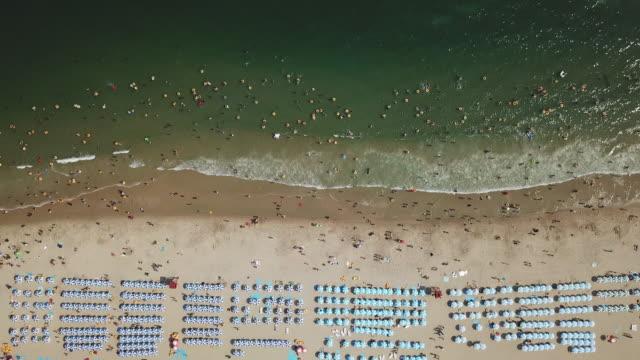 beach umbrella scenery in haeundae beach / busan, south korea - tourism stock videos & royalty-free footage