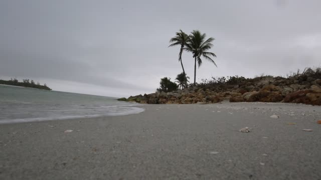 stockvideo's en b-roll-footage met strand vakantie bestemming captiva island video - fort myers