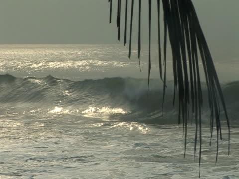 vídeos y material grabado en eventos de stock de beach view of sea with palm leaf, was - elmina