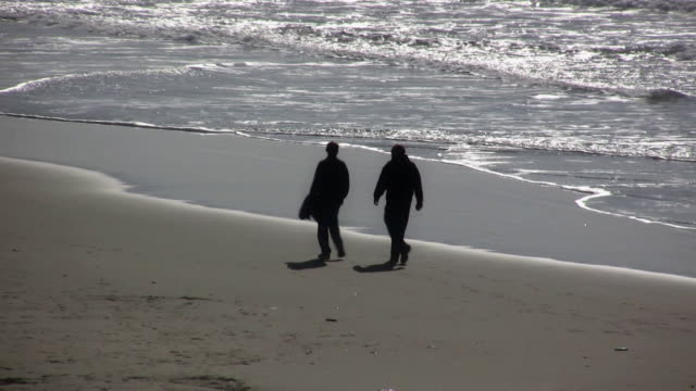 beach walk märz v.2 - gemeinsam gehen stock-videos und b-roll-filmmaterial