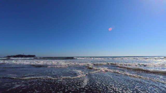ビーチに江ノ島-4 k - 動物の色点の映像素材/bロール