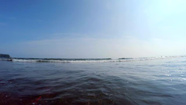 beach with enoshima - animal markings stock videos & royalty-free footage