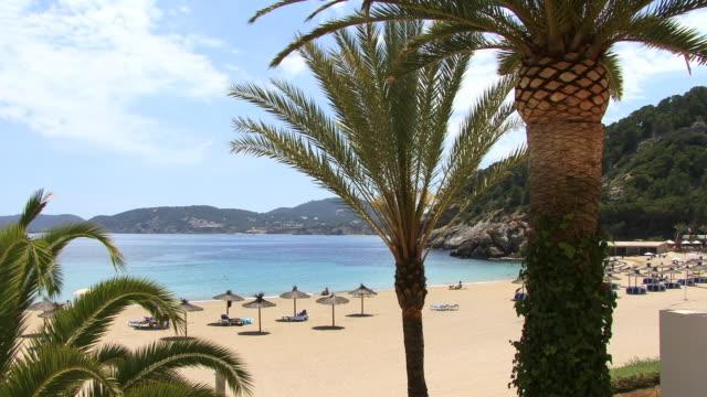 vídeos y material grabado en eventos de stock de ws, ha, beach with sun umbrellas, palm tress in foreground, cala de sant vicent, ibiza, balearic islands, spain - palmera abanico