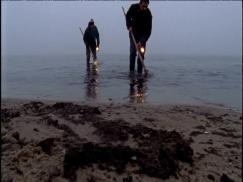 beachcombers search for amber on baltic coast poland - amber stock videos & royalty-free footage