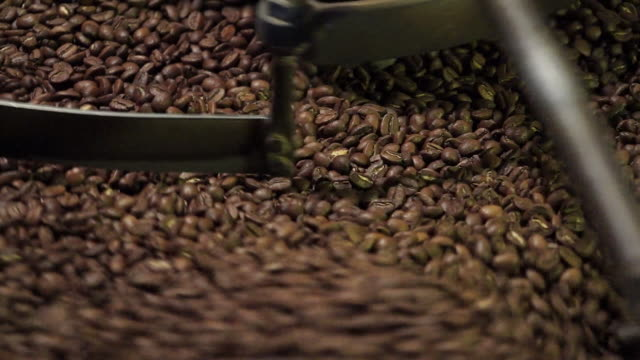 Beans roasting in vintage Probat coffee roaster