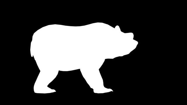 vídeos y material grabado en eventos de stock de bear ataque (en bucle) - pata com garras