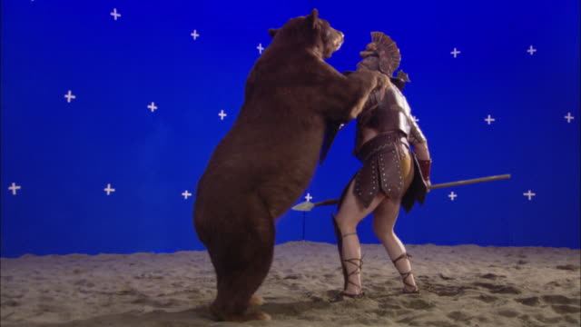 vidéos et rushes de a bear attacks a gladiator in front of a blue screen. - gladiateur
