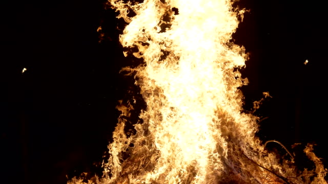 vidéos et rushes de a bear dancing near a bonfire during 'giubiana' a traditional celebration in the northern italy where a puppet of an old witch is burnt 30 january... - dancing bear