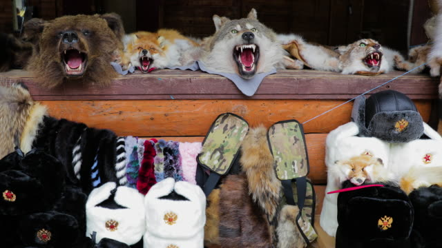 bear, fox, wolf, lynx skins & ushanka hat's, izmailovsky market, moscow, russia - bear market stock videos and b-roll footage