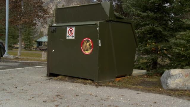 stockvideo's en b-roll-footage met ws tu bear proof garbage bin / banff, alberta, canada - afvalcontainer container