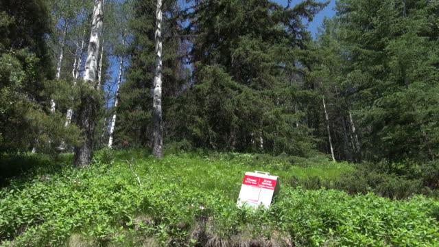 MS Bear warning at Bow river parkway / Banff National park, Alberta, Canada