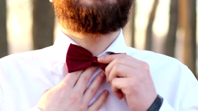 beard and bow tie are in today, hipster look - button down shirt stock videos & royalty-free footage