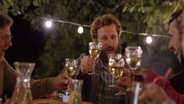 vídeos de stock e filmes b-roll de bearded man proposing a toast at a picnic in the evening - brinde