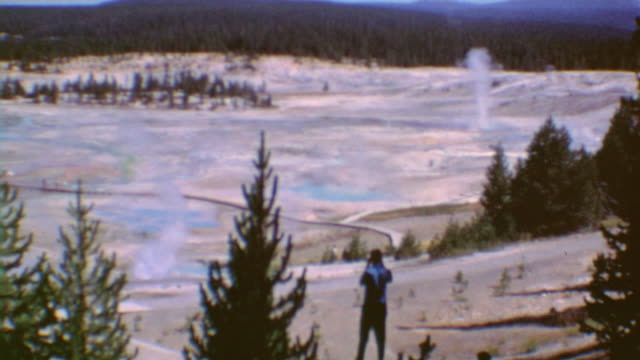 bears in yellowstone / norris geysers signage / moose in trees / father and son walking / panorama of geysers / up close to geothermal activity /... - old faithful stock videos & royalty-free footage