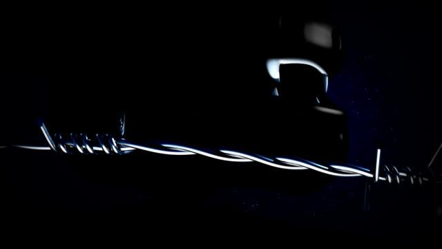stockvideo's en b-roll-footage met beast in a cage - rabiës
