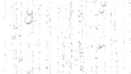 Beautiful 3d Animation of Water Bubbles Rising Up. Loopable Sparkling Water on White and Black Backgrounds. HD 1080.