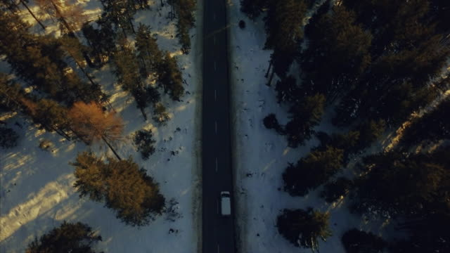 beautiful aerial drone shot over cold switzerland, the camera tracks up from a secluded road, following a car the reveal the snow capped alps. - snowcapped mountain stock videos & royalty-free footage