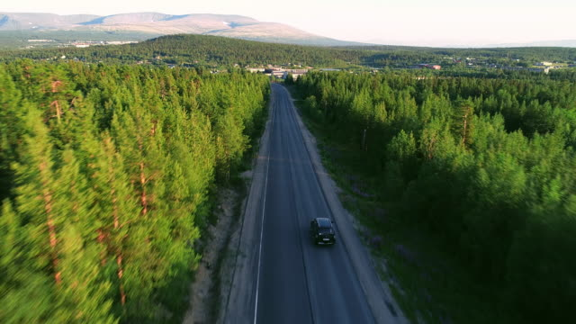 beautiful aerial view of asphalt road in the forest - wide stock videos & royalty-free footage