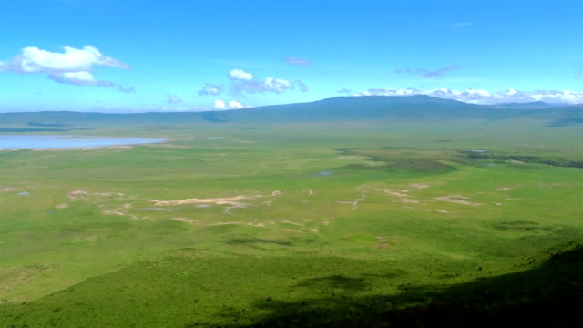 beautiful african savannah - steppe stock videos & royalty-free footage