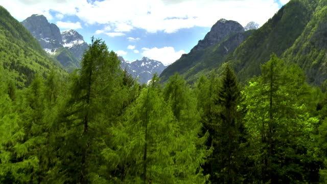 ws aerial beautiful alpine landscape - evergreen stock videos & royalty-free footage