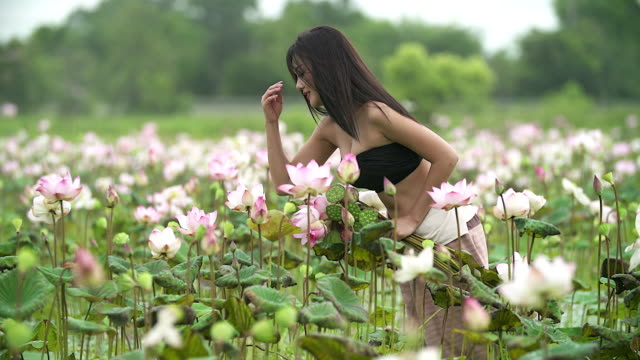 beautiful asian woman keeping lotus in the lotus field. - lily stock videos & royalty-free footage