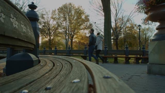 vídeos y material grabado en eventos de stock de hermoso atardecer de otoño en el central park bench en primer plano - mancha solar