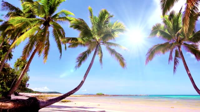 beautiful beach - krabi province stock videos & royalty-free footage
