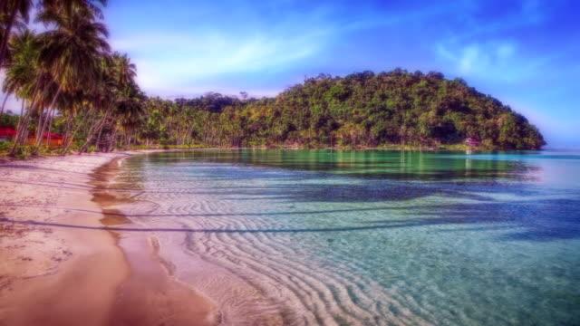 beautiful beach - fiji stock videos & royalty-free footage