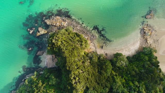 vackra stränder i nya zeeland. - bay of islands nya zeeland bildbanksvideor och videomaterial från bakom kulisserna