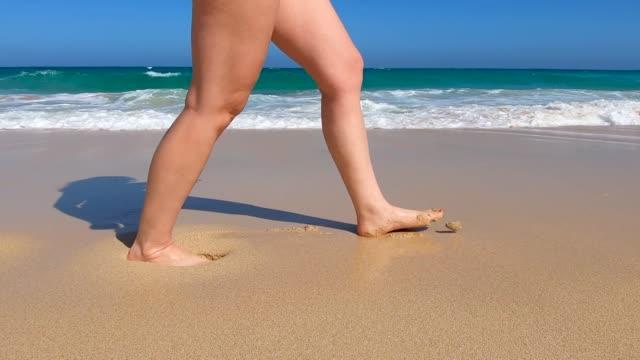 vídeos de stock e filmes b-roll de beautiful bikini woman walking along the beach in the sun near by the shore - vista lateral