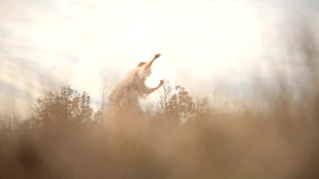 beautiful boho dancer - boho stock videos & royalty-free footage
