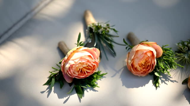 beautiful boutonniere of the groom and groomsman. - boutonniere stock videos and b-roll footage
