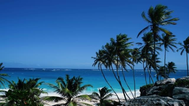 beautiful caribbean scene - カリブ海点の映像素材/bロール